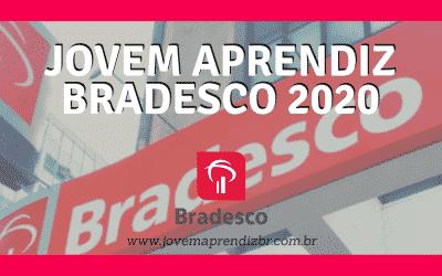 Jovem Aprendiz Bradesco 2020 – Saiba mais